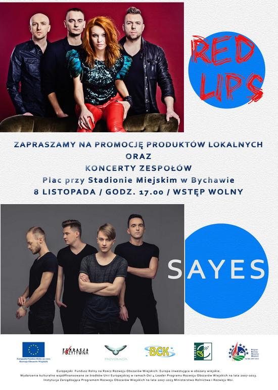 2014-10-30 koncert red lips bychawa